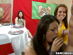 Freaky girls ready to give a sinful blowjob in each and every big cock
