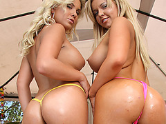 Delicious chicks gets asses pounded deep