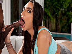 Lela Star lubricates Stallions big cock after test fucking her pussy