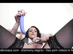 hdloveass - harmony reigns - free p