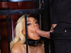 Sexy blonde huge butt babe Luna Star gets an  anal fuck