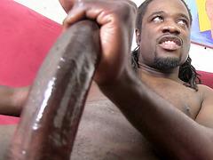 Haley Sweet Gets DP'd by Black Dicks