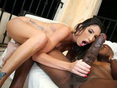 Dava Foxx gets monster black cock